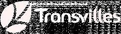 logo valenciennes blanc